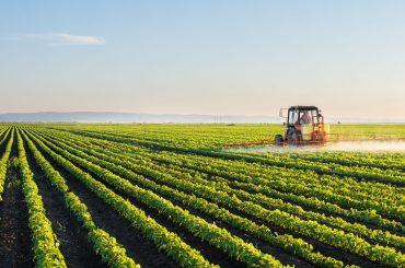 PNDR 4.2 – Sprijin pentru investiții în prelucrarea/ comercializarea și/ sau dezvoltarea de produse agricole